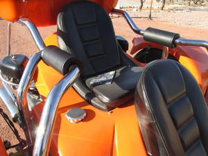 arm rest cushions for Rewaco passenger bars